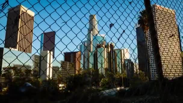 Los Angeles. Skyscrapers are standing. High tall buildings are visible. Growing high green trees. Blue, clear sky. The sun shines bright.