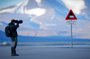 Photographer with big lens and road traffic sign with Polar bear