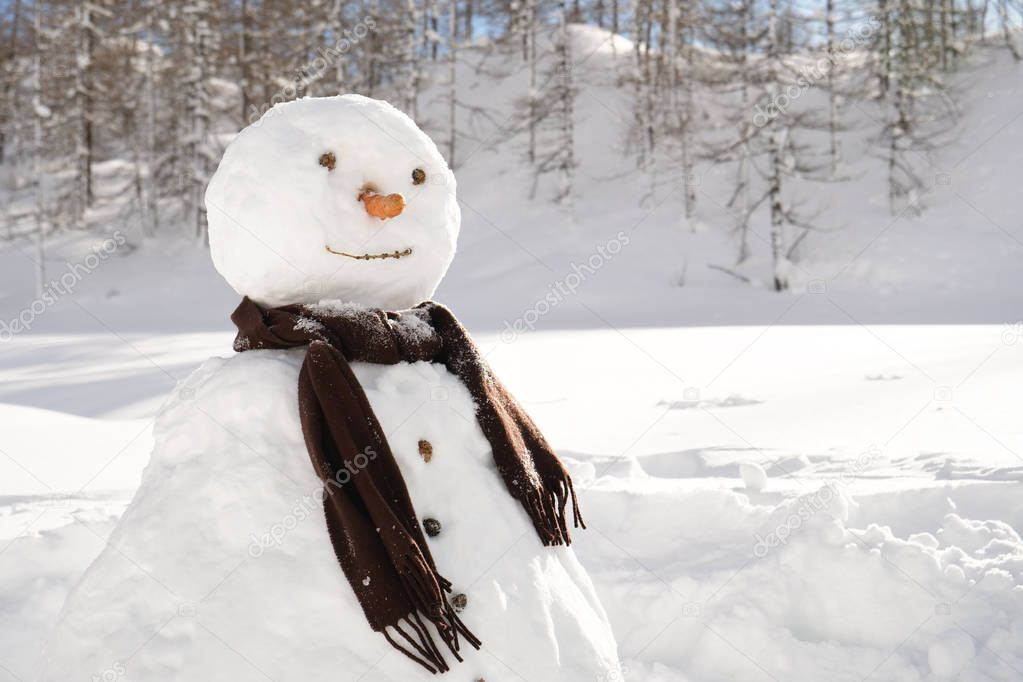 A snowman with a carrot instead of a nose, and around it a landscape of mountain and lots of freshly fallen snow.