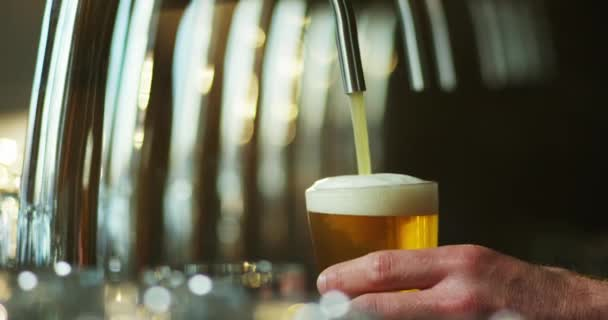 video, oříznuté snímky barman lejt pivo ve skle v baru