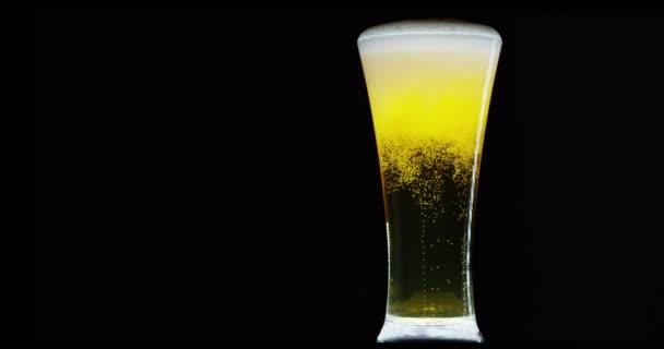 video z piva ve skle s pěny a bublin černém pozadí