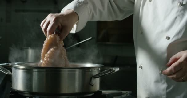 Octopus bubliny jemně ve vodě, zatímco se právě vaří kuchař s tradiční italský recept