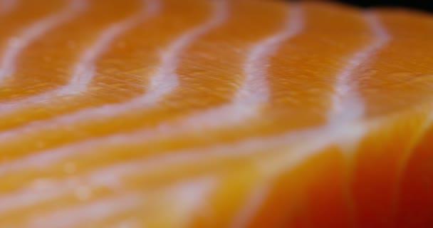 Detailní záběr videa, plátek čerstvého lososa rybí maso, mořské plody
