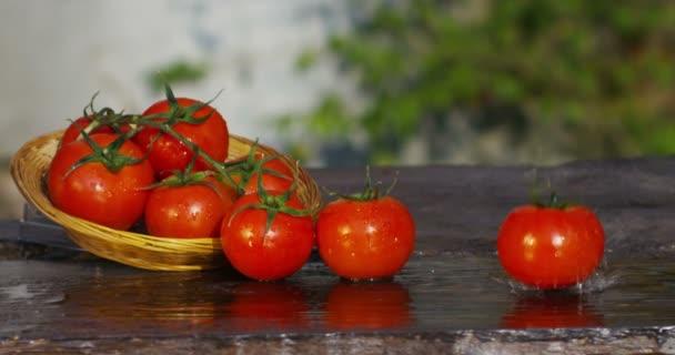 video z čerstvých červených rajčat v koši na stolek, rajče