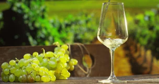sommelier in vigneto vino bianco di versamento in vetro al rallentatore