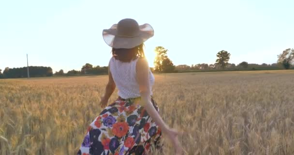 back view of woman walking in wheat field and wearing summer hat, countryside nature and landscape