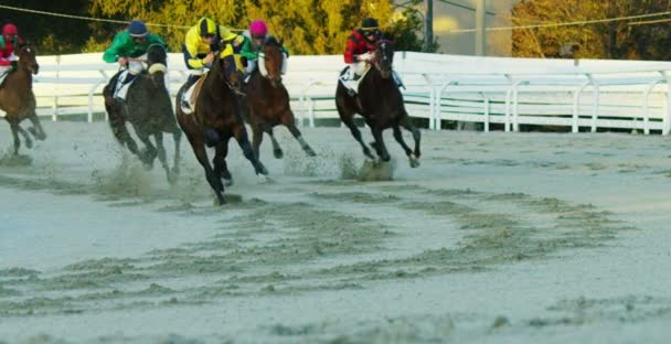 Horse race track, hippodrome with running horses and riders, slow motion video