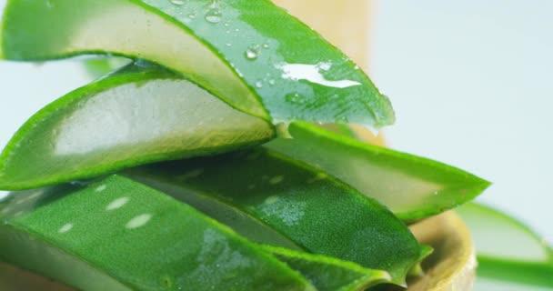 složení aloe vera. pojetí krásy krém odvozené z aloe, přírodní medicína a péče o tělo. Terapeutické vlastnosti, lifting, omlazení a příroda