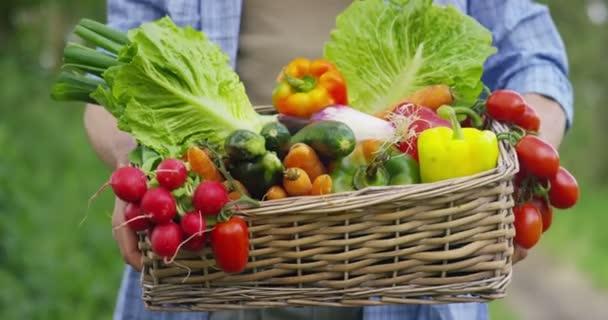 video o hezkého rolníka na venkově zobrazující košík se sklizní zeleninou