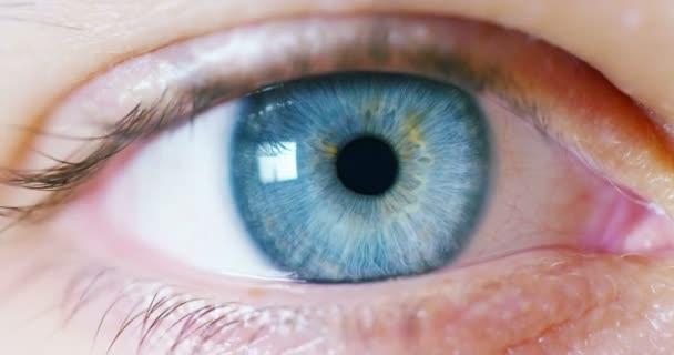 makro, modré oko s rozšíření zornice. koncept čisté a jasné zobrazení skutečnosti, přístup a hloubkovém čištění tiskové hlavy a pozornost zdraví očí.