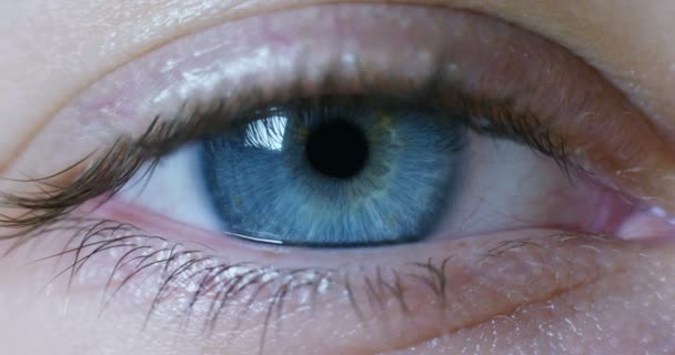 macro blue eye with dilated pupil. concept of clean and clear view of reality, approach and deep cleaning and attention to eye health.