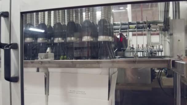 Láhve na víno červené plnící proces ve víně plnění továrna