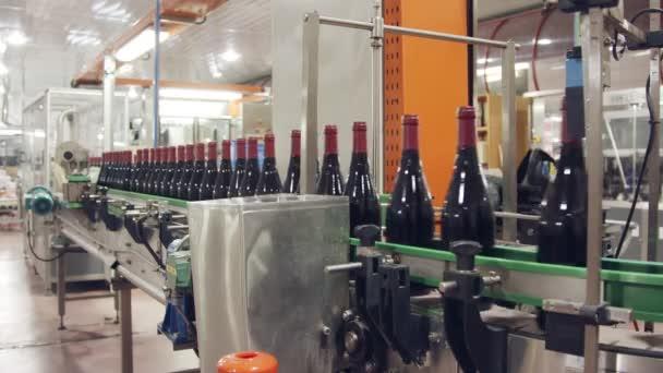Červené víno lahve na běžícím pásu ve víně plnění továrna