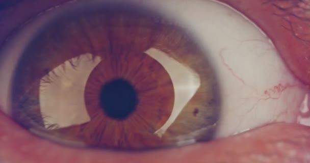 Extreme macro shot of a brown human eye