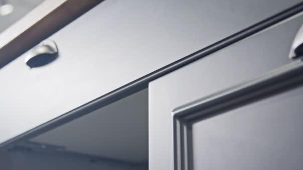 Követés szemcsésedik-ból egy luxus konyha-val szürke és fehér klasszikus tervez