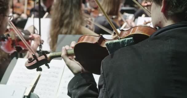 Zenész hegedűjáték közben a klasszikus zenei próba, mielőtt a koncert