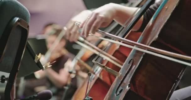 Zenész játszik gordonkára során a klasszikus zenei próba, mielőtt a koncert