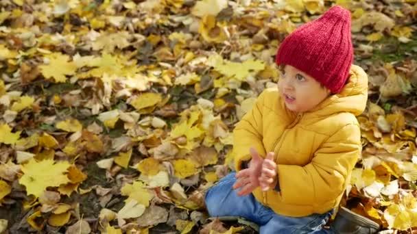 šťastný chlapec hraje v parku na podzim
