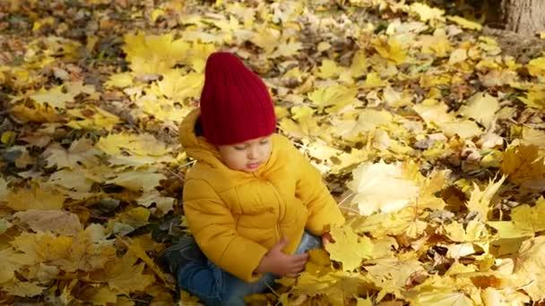 Glücklicher kleiner Junge spielt im Herbst im Park