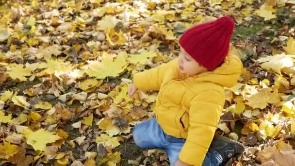 fröhlicher kleiner Junge spielt im Herbst im Park in orangefarbenen Blättern