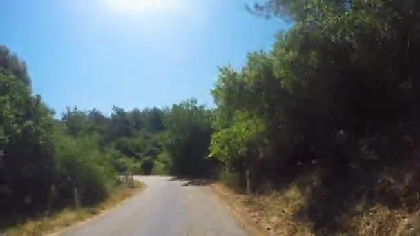 Autofährtauf einer Bergwaldstraße mit Kurven im Sommer in Sunny