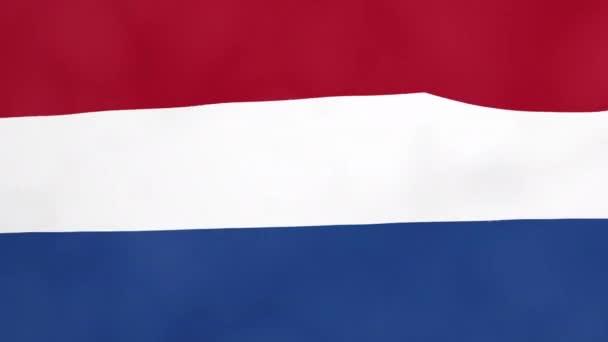 Nizozemské země mává 3d vlajky duo přechodu pozadí, samostatný na zelené obrazovce pro klíč barev. Připraven k použití na cestovní reklamy, světové politické události nebo zprávy stejně jako sport, soutěže a hry.