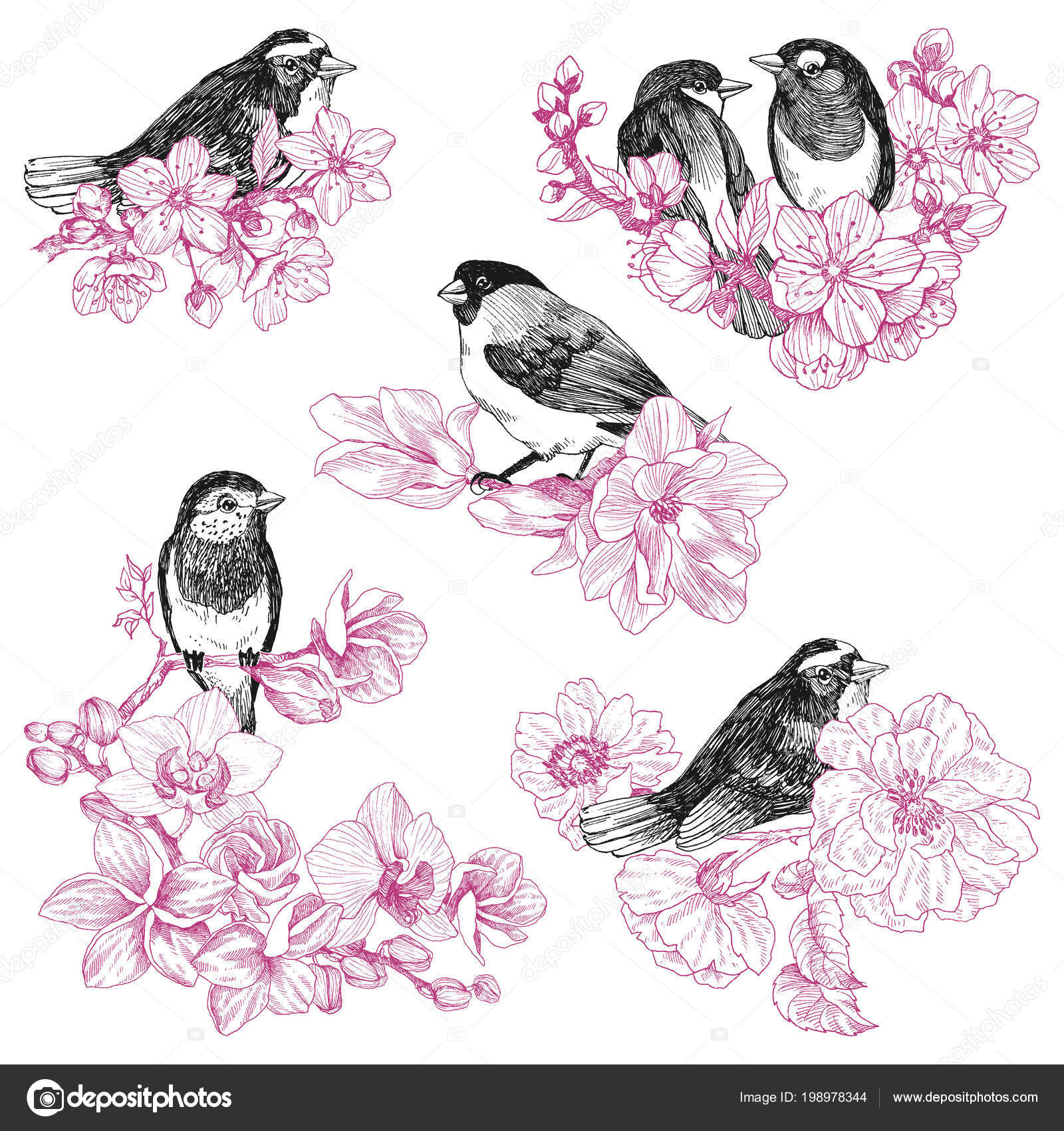 Set Of Birds Hand Drawn In Vintage Style With Flowers Spring Bird