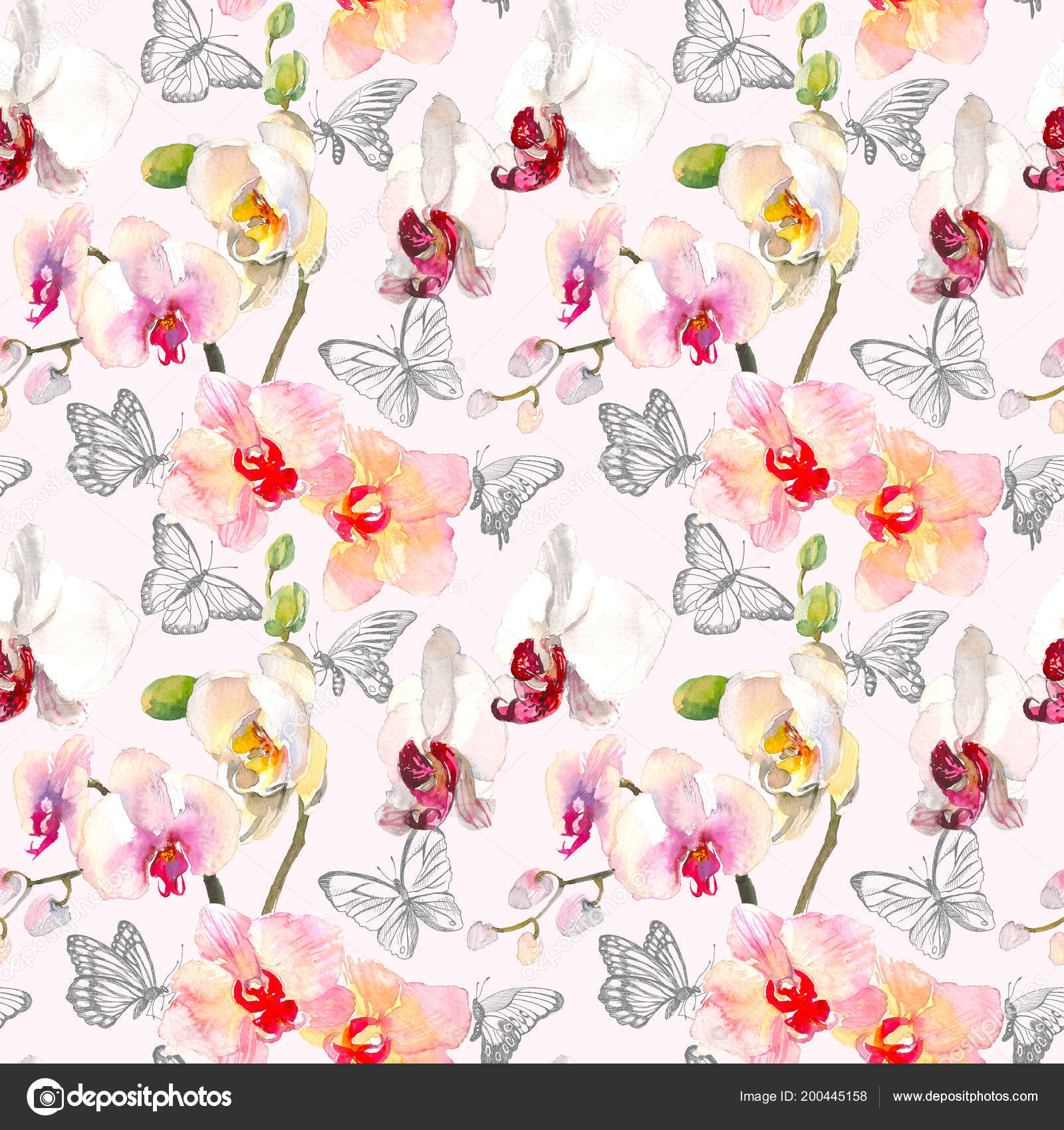 Tropical Seamless Pattern With Pink Orange Orchids Flowers Tropic