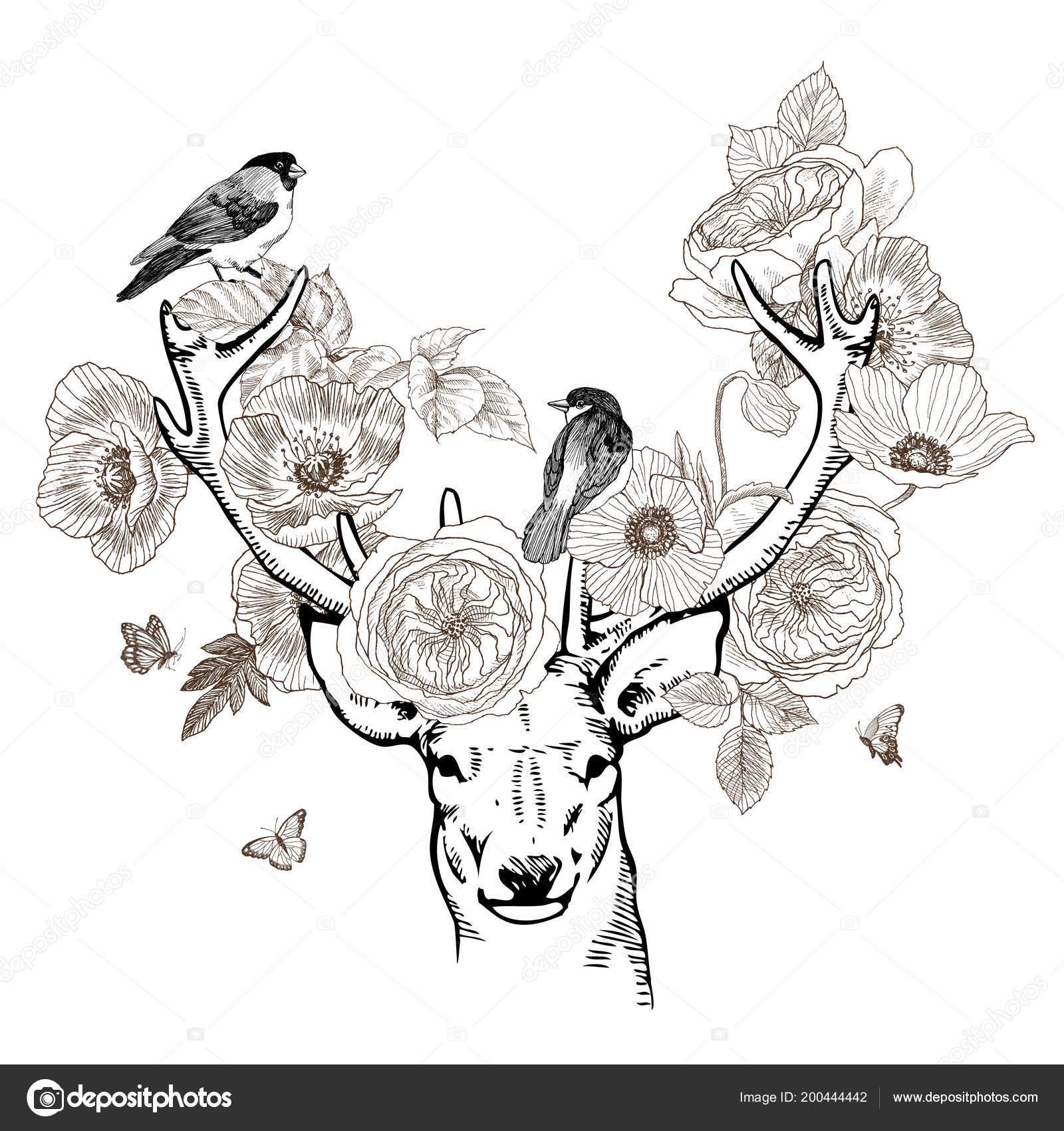 Ręcznie Rysowane Realistyczne Jeleni W Otoczeniu Kwiatów Piękne