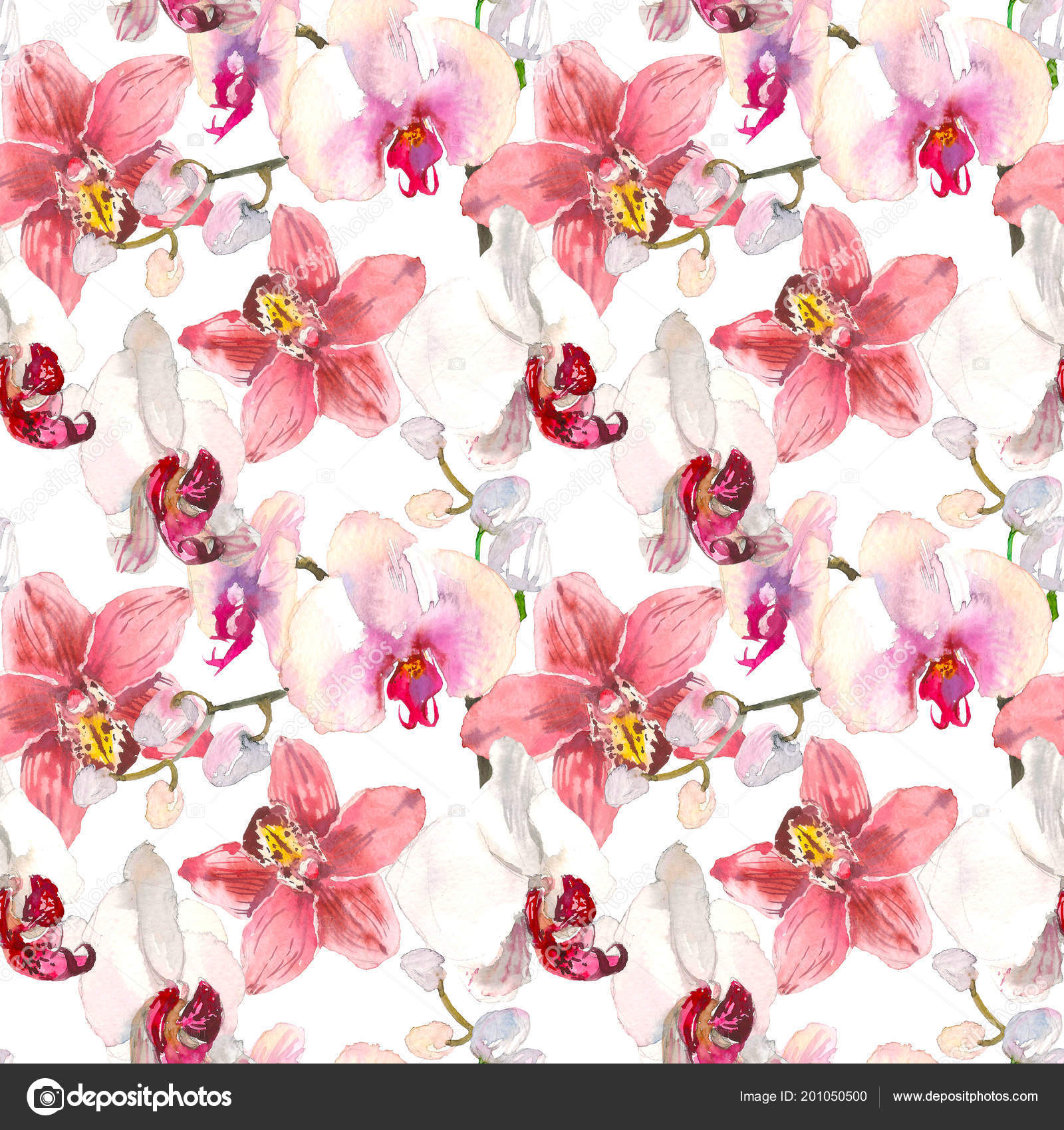 Tropical Seamless Pattern With Pink Orchids Flowers Tropic Floral