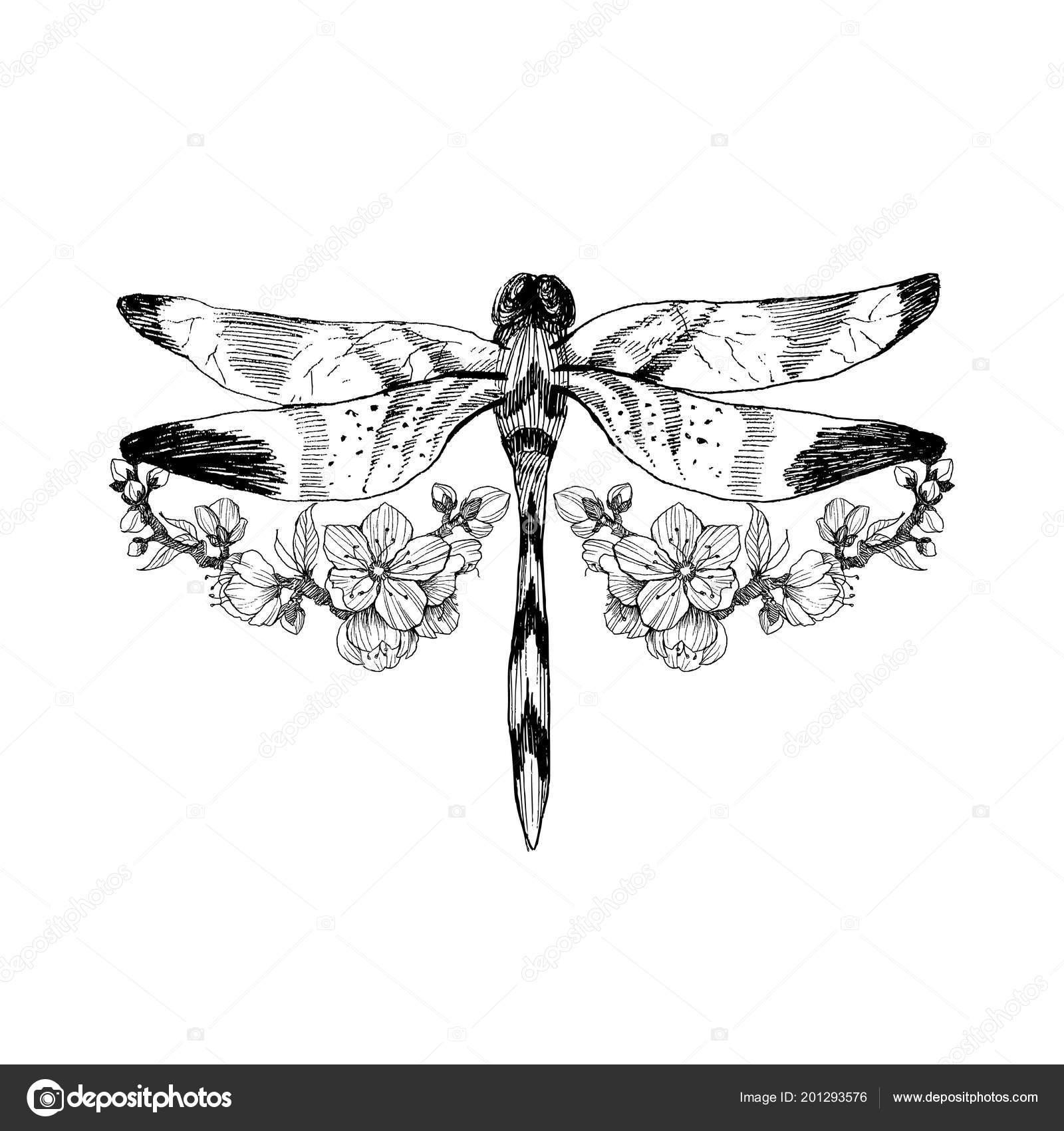 Flores y libélulas. Tatuaje de vector de estilo vintage. Aislados ...