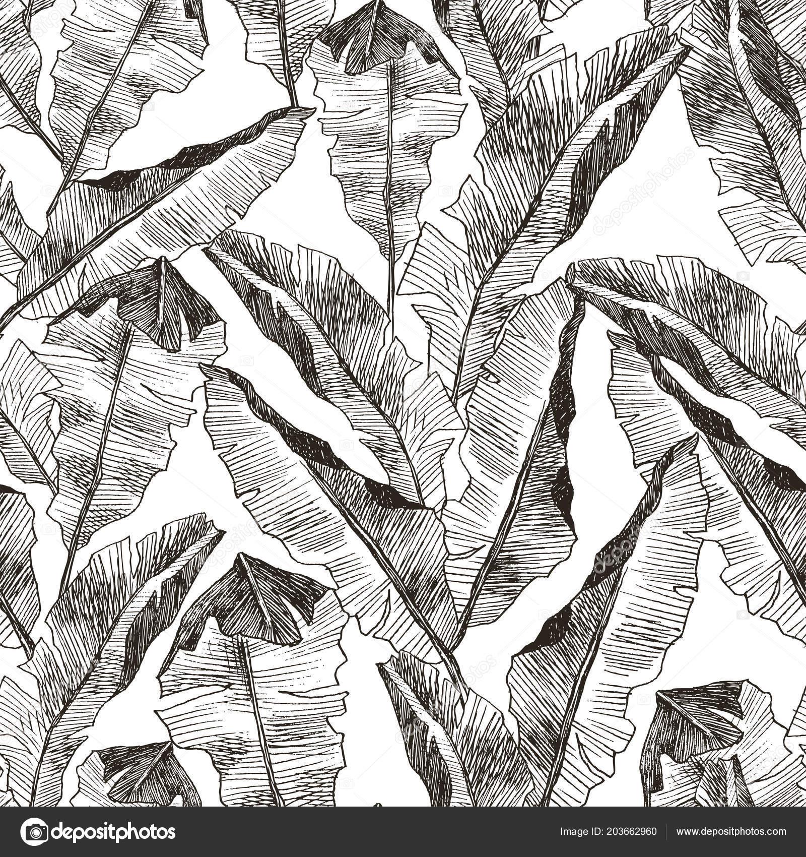 Modele De Tropic Plantes De Jungle Sans Couture Florale Imprimer Le