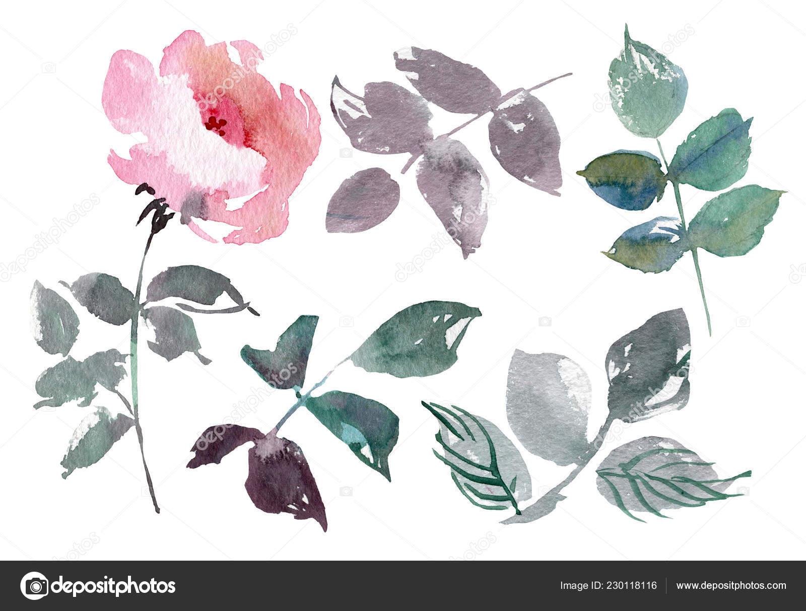 Vintage Blumen Legen Overwhite Hintergrund Hochzeitsblumen Zu