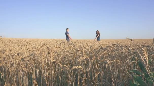 young loving couple in nature in summer on a background of field with oats, there is noise on the video