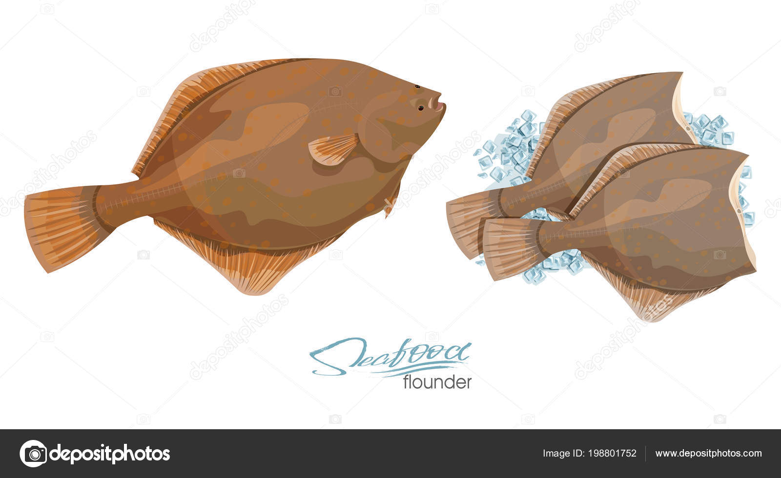 Olive Flounder Vector Illustration Sea Fish On Ice Cubes Isolated On White Background Icon Badge Flounder Fish For Design Seafood Packaging And Market Stock Vector C Irkus Life Gmail Com 198801752 Photo about cooking ingredient series olive flounder. https depositphotos com 198801752 stock illustration olive flounder vector illustration sea html
