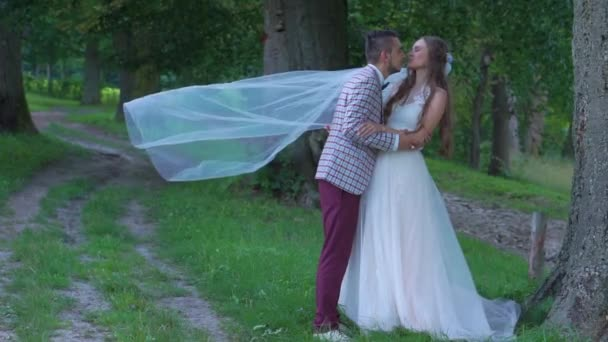 fafc705c4d Románticos novios sonriendo y besándose en un parque recién casaron pareja  a pie juntos– metraje de stock