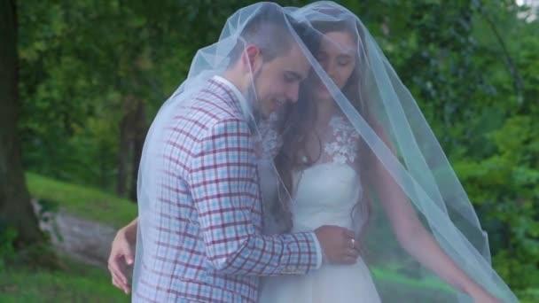 e321307986 Pareja de boda romántica bajo el velo de novia recién casada pareja juntos  cogidos de la mano– metraje de stock