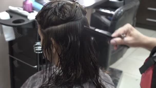 Close-up of the hairdressers hands. She combs and cuts dark strands of hair to a girl in a beauty salon. Rear view, side view. 4K.