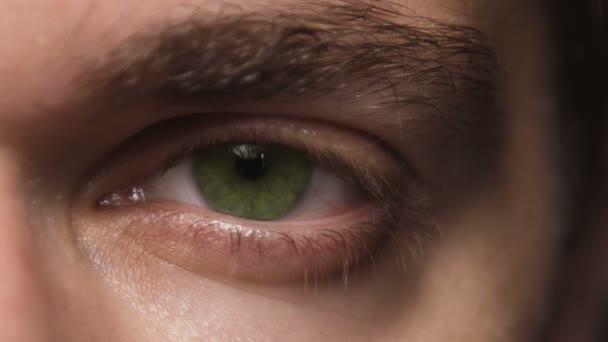 Zavřete makro záběr blikající lidské mužské oko. Zelené oční koule.