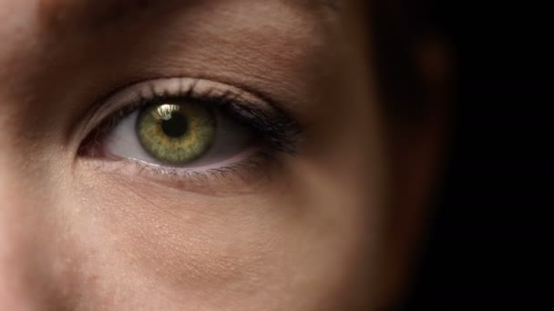 Moving female green-brown eye pupil. Opening eye, face close up. Beautiful womans face.