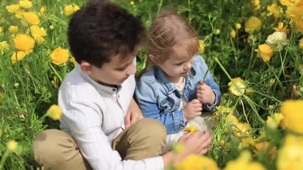 boy and girl in yellow wildflowers