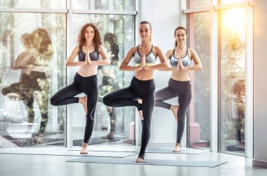 Group of young sporty people practicing yoga lesson standing in Vrksasana exercise, Tree pose with namaste gesture, working out, indoor, studio. Healthy lifestyle concept