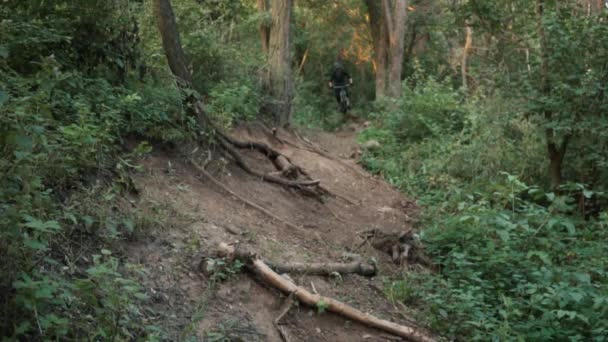 na horském kole spěchá po silnici v lese, pomalý pohyb