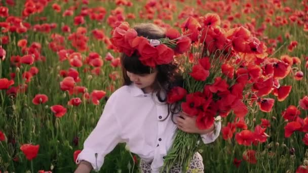 little girl with wreath on her head gathers red poppy flowers in flowered field, slow motion