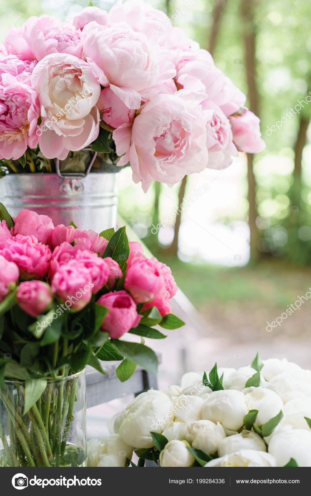 Cam Vazo Içinde Sunulan Güzel çiçekler Pembe Peonies Güzel Buket