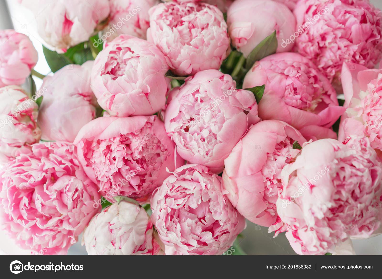 красивые розовые обои на рабочий стол