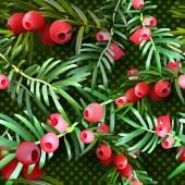 Fotografie Weihnachten nahtlose Muster mit Stechpalmen Blätter und Beeren