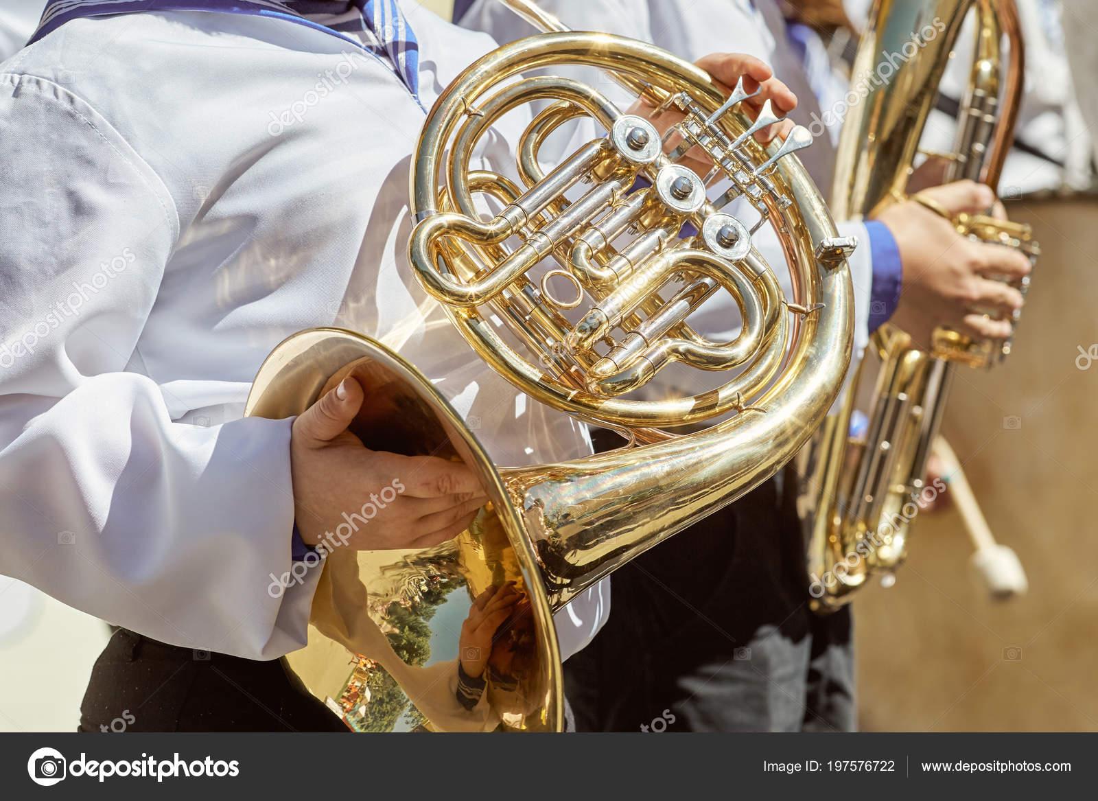 Classic Brass Band Plays Musical Garden Musical Instrument Brass ...