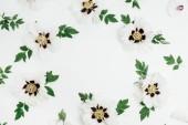 Fotografie Rahmen der weißen Pfingstrose Blumen auf weißem Hintergrund. Mock-up flach legen, Top Aussicht