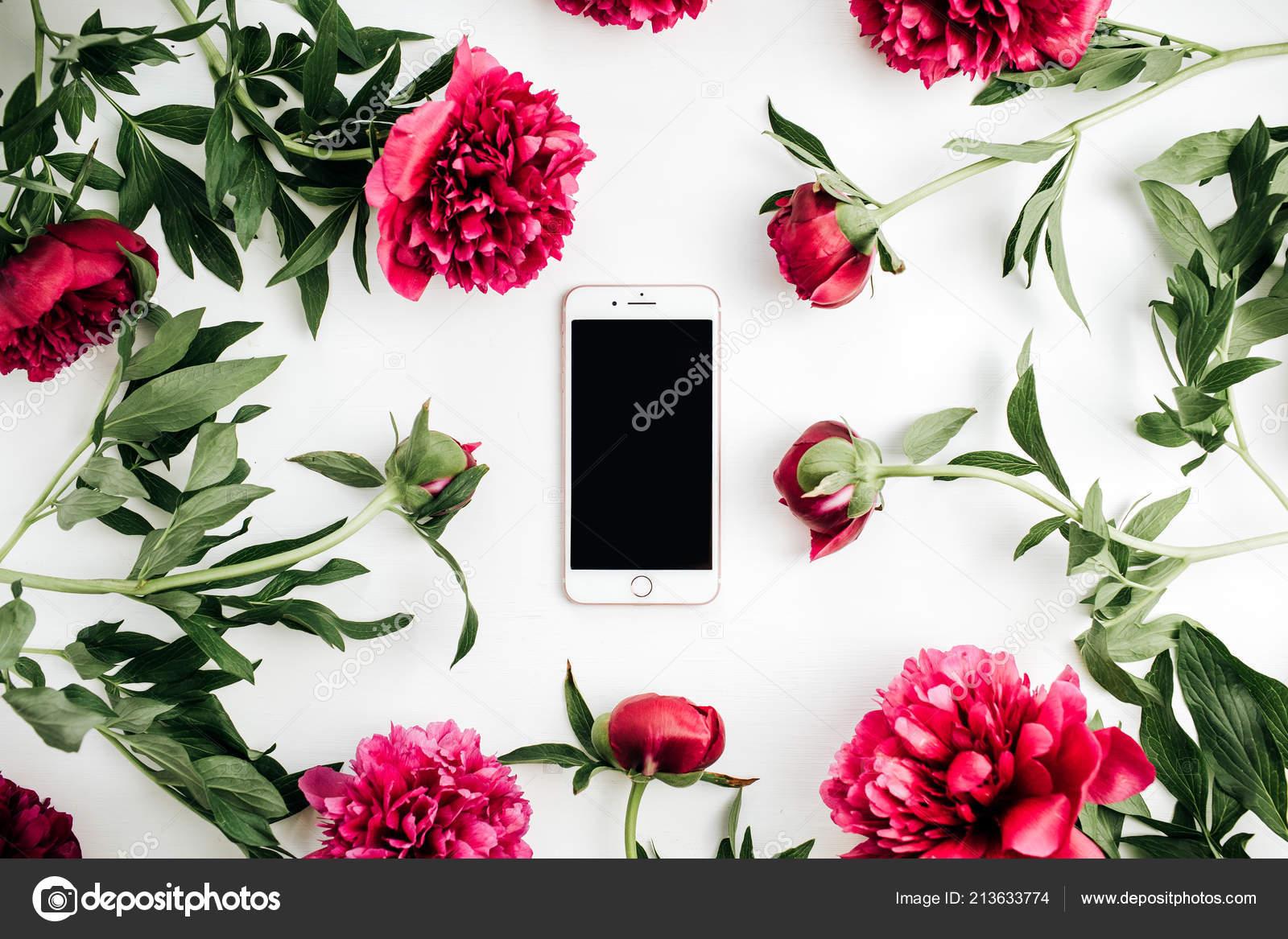 Telefoni Cellulari Cornice Fiori Peonie Rosa Sfondo Bianco Vista